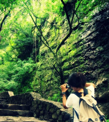 Nature Traveling Discovering