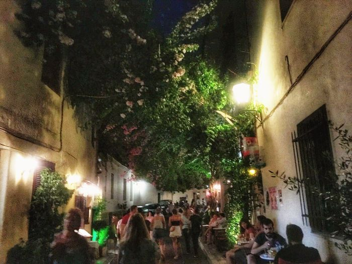 Busy night street in Athens, Greece Illuminated Group Of People Night Tree Real People Plant