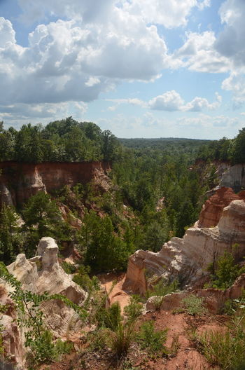 Providence Canyon State Park, Georgia, United States Beauty In Nature Cloud - Sky Environment Growth Land Landscape Mountain Nature No People Non-urban Scene Outdoors Plant Rock Rock - Object Scenics - Nature Sky Tranquil Scene Tranquility Travel Tree