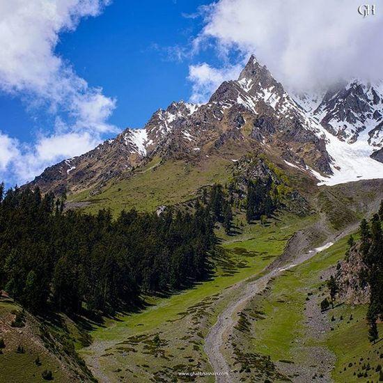 Naltar Valley Naltar Valley June2015 Ghalibhasnainphotography Gilgitbaltistan Hunza Nagar Beautifulvalley Pakistan Dawndotcom Northernpakistan