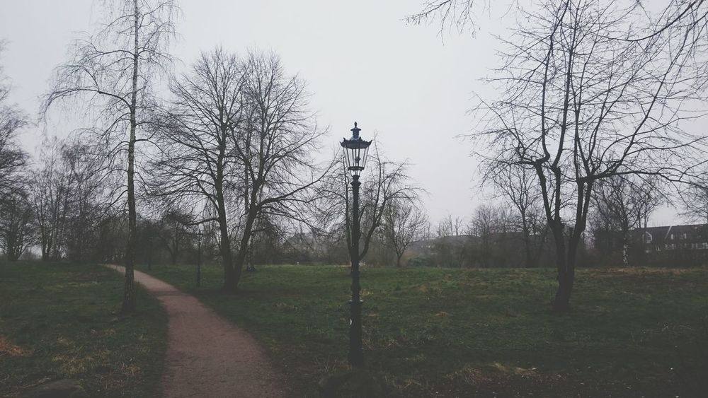 Foggy Morning In Düsseldorf. A Walk In The Park to Relax a little. Taking Photos Enjoying Life The Places I've Been Today
