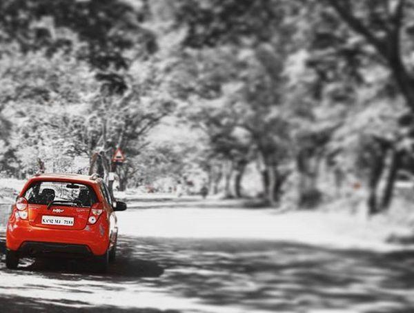 Weekend University Bangalore Photoshoot Outdoorphotography Randomshoot Nikon D3200 Primarylens Chevy Beat Red Colorpop Storiesofindia Instabengaluru Myblr _soi _hoi Nkmemes Ig_karnataka Igers_world Igersworldwide Igers Travel City insta_indiabengaluruwalespring