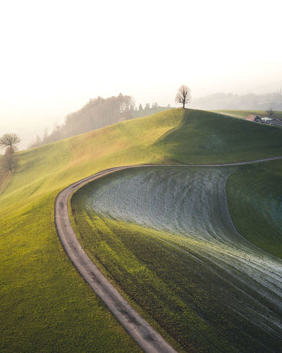 Sky Road Transportation Grass Landscape Nature Environment Plant Scenics - Nature Beauty In Nature Green Color Land Tranquility Sport Day Activity No People Fog Tranquil Scene Outdoors Lonely Tree Field Emmental Drone  High Angle View