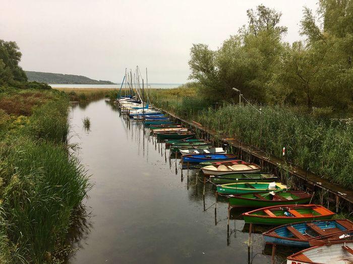 Water Tree Transportation Nautical Vessel Outdoors Nature No People Tranquility Beauty In Nature Lake Balaton