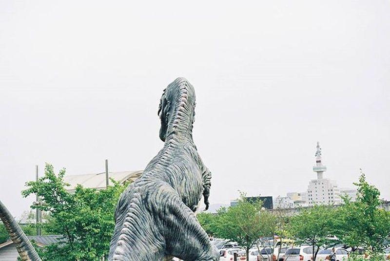 2016.04.28. 두려움은 만들지 말아요. 공룡 대전 과학관 Dinosaur Daejeon 35mm Film Filmisalive Nikon N70 F70 Kodak Kodakfilm Nofilter 무보정 필름사진