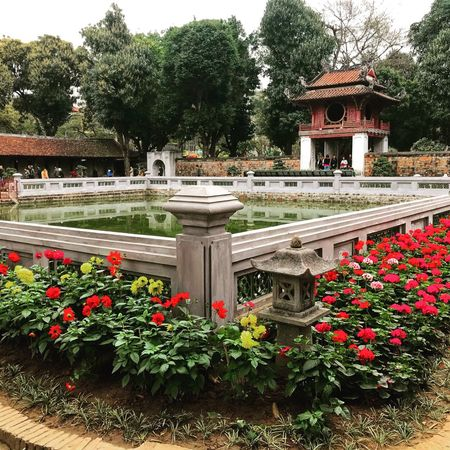 Cultureshot Tree Growth Plant Flower Outdoors Green Color Nature Day Red Architecture No People Beauty In Nature Built Structure Park - Man Made Space Building Exterior Water Flowerbed Sky EyeEmNewHere