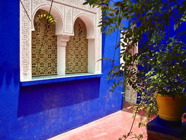 Bleu Majorelle - A fresh garden and a legendary blue in the heart of the vibrant city Marrakesh Blue Built Structure Day Façade Garden Majorelle Marrakech Morocco No People Plant Relaxing Tranquility Window
