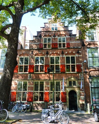 17th century gable house - The Hague, The Netherlands. Architecture Building Exterior Tree Day No People Built Structure Outdoors Window Gable Gable Houses