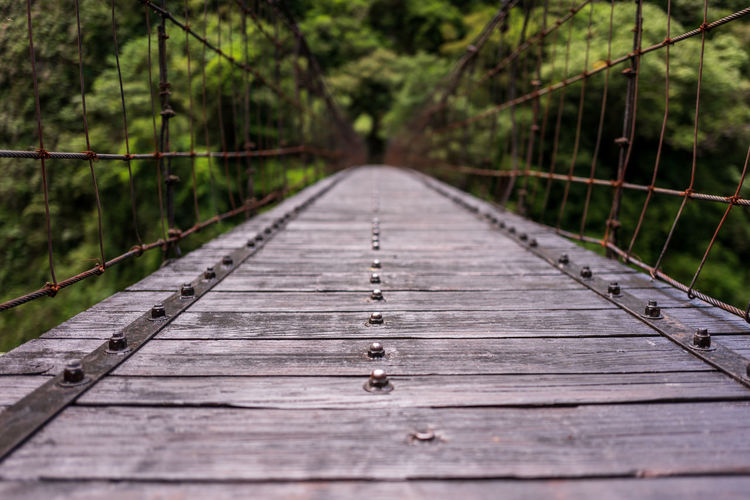Surface level of wooden footbridge in forest