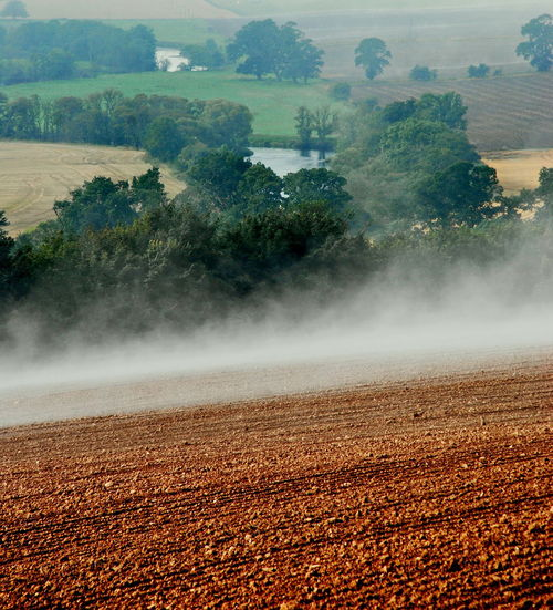 Cairny Brays Mist On Field Perthshire River Earn Scotland Agriculture Beauty In Nature Cereal Plant Day Farm Field Freshness Landscape Nature No People Outdoors Plowed Field Rural Scene Scenics Tree