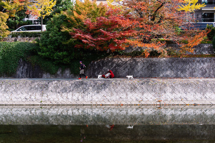 Enjoying life in Autumn along River Toyohira, Sapporo, Japan, Nov 2018 Lifestyles City Japan Sapporo Hokkaido People Exercising Jogging Running Dog Pet White Dog Painting Drawing Lady Red Coat Red Running Man Artist Hobby Autumn Seaonal Outdoor River Toyohira River