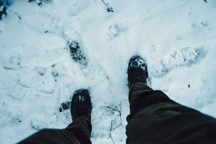 Low section of person on snow covered land
