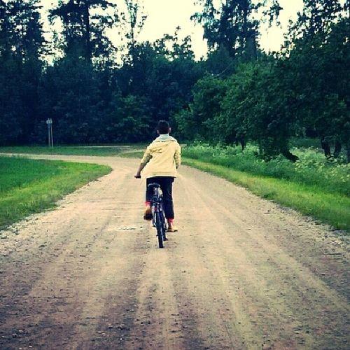 Manscels Summer Bicycles Followingmy follfowback
