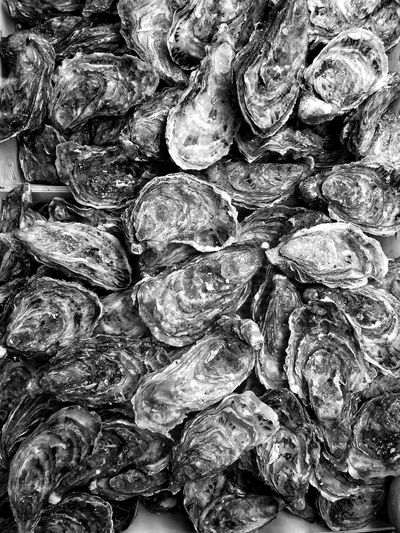 Once upon an oyster Food Oyster  Iphone5s LoveFood Streetphotography_bw Streetphoto_bw B&w Street Photography B&w Blackandwhitephotography Black&white Black And White Photography Blackandwhite Photography Black & White Black And White Blackandwhite Taking Photos Independent Eye Black & White Photography B&W Food Project