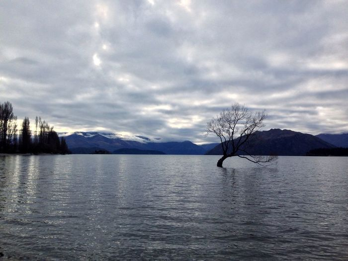 Lake Wanaka New