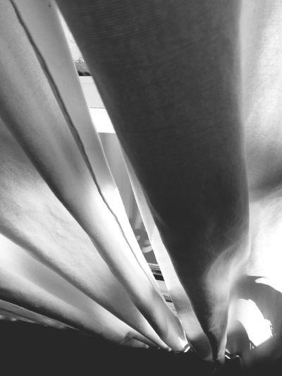 Blackandwhite Curtains Window Light And Shadow