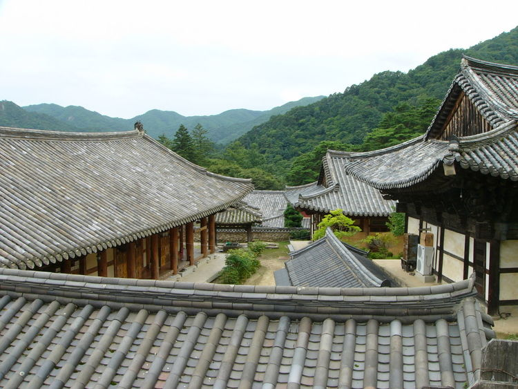 Architecture Beauty In Nature Building Exterior Built Structure Day Eaves House Korea Mountain Mountain Range Nature No People Outdoors Roof Sky Tiled Roof  Traditional Building Tree