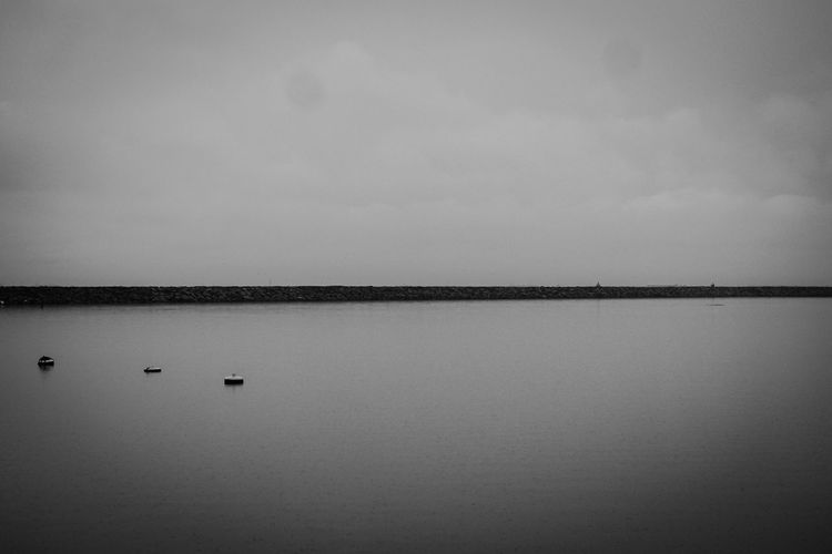 Reflection Tranquility Water Lake Tranquil Scene Outdoors Beauty In Nature Nature Eyeem Philippines Magnumphotos Monochrome_life Bnw_collection Scenics Monochrome Photography MagnumPleasureStore Bnw Street Photooftheday Monochrome _ Collection Monocrhome