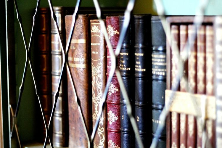 Beautyfull old books in a bookshelf Books Large Group Of Objects Variation Choice No People Close-up Indoors  Bookshelf Books ♥ Book Bookeh Vintage Vintage Books Old Old Books