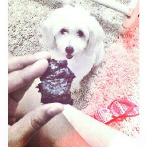 Branquela querendo brownie ?❤?