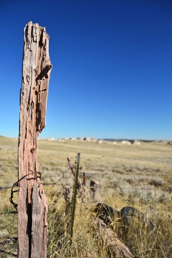 Oddly looking wooden post Sunshine Outdoors Barbed Wire Fence West Of Lusk Wyoming Shadows Tall Rural Scene Country Side Clear Sky Wooden Post Blue Wood - Material