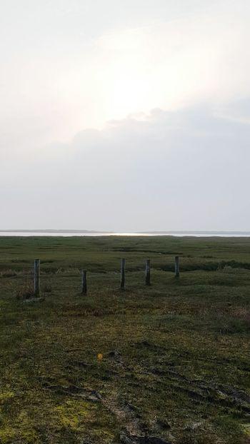 St. Peter-Ording Strand Nordseeküste Eiderstedt