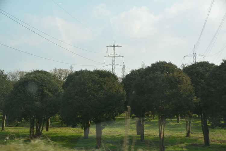 Cable Cloud - Sky Connection Day Electricity  Electricity Pylon Field Fuel And Power Generation Green Color Growth Landscape Nature Power Cable Power Line  Power Supply Sky Technology Tranquil Scene Tranquility Tree