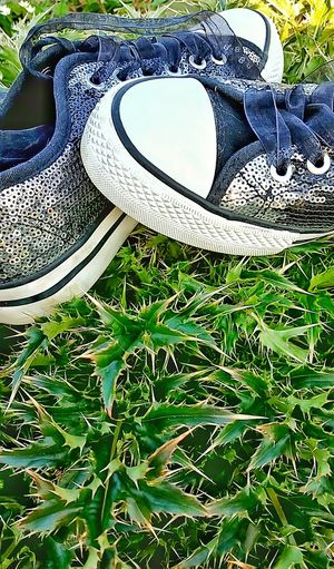 Footwear Shiny Clothing Outdoors Shoes Pair Of Shoes Pattern Fashion Pair Shiny Shoes Glitter & Sparkle Glittering Surface And Texture Surface Favorite Shoes Favorite Favorite Things  Silver  Silver Shoes Flower Textures And Surfaces Shiny Surfaces Leaf Plant Growth Lieblingsteil