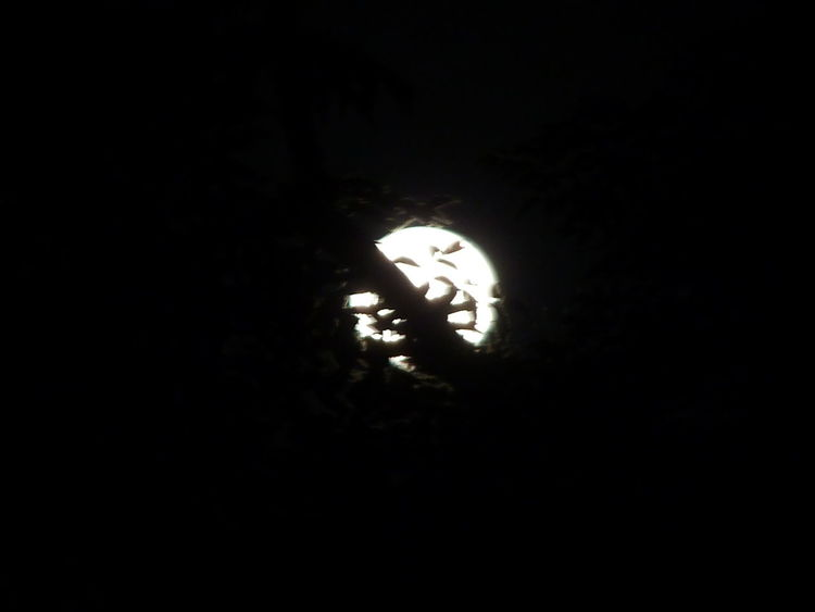 Moonlover . yes it's the moon without any effects