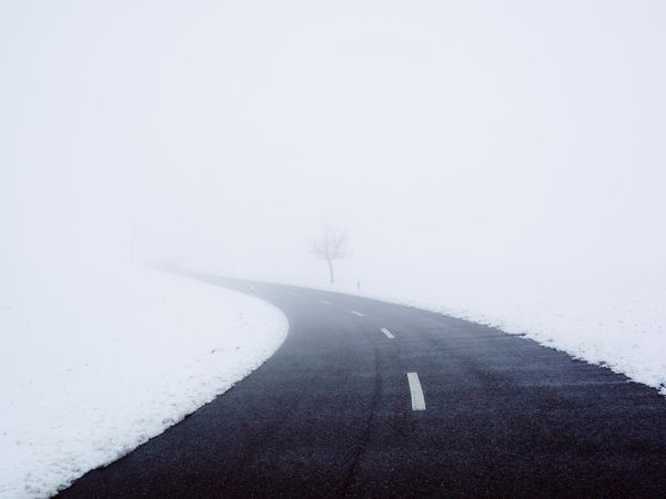 Fog Winter Cold Temperature Snow Weather Road Day Outdoors Beauty In Nature Bare Tree Nature