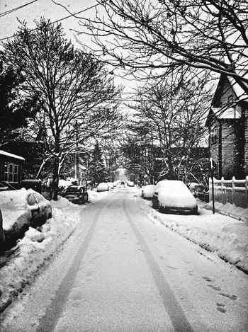 Streetphotography Blackandwhite Winter AMPt - Vanishing Point