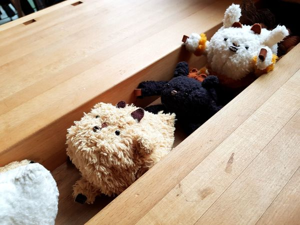 Dolls Doll Photography Doll Doll And Table EyeEm Selects Hedgehog High Angle View Animal Themes Animals In The Wild Outdoors Mammal