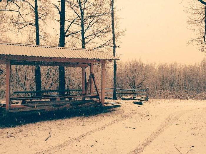 The Great Outdoors With Adobe Winter First Eyeem Photo