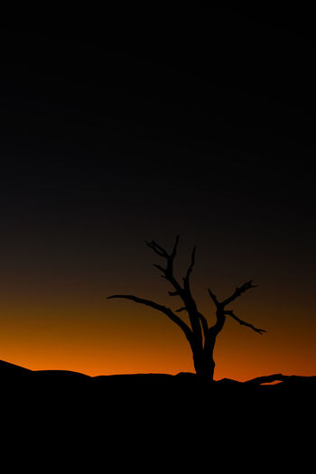 Arid Climate Bare Tree Beauty In Nature Dead Vlei Desert Landscape EyeEm Night Shots Landscape Milky Way Namibia Nature Night No People Orange Color Outdoors Scenics Silhouette Sky Sunset Tranquil Scene Tranquility Tree