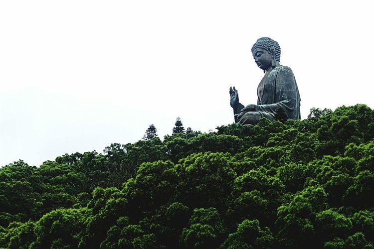 Lantau Island Hong Kong City Big Buddha Statue Showcase June