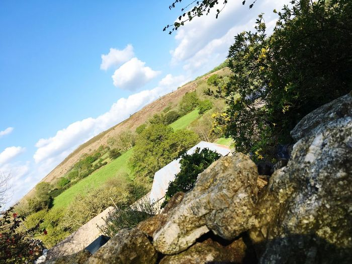 Sky Cloud - Sky Nature Tranquility Plant Day Tree Beauty In Nature No People Low Angle View Rock Tranquil Scene Outdoors Scenics - Nature Green Color