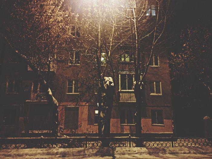 Taking Photos Snow Night Lights Night