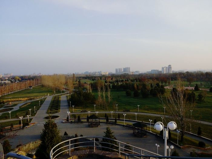 Almaty, Kazakhstan No People Outdoors City Growth Tree Hanging Out