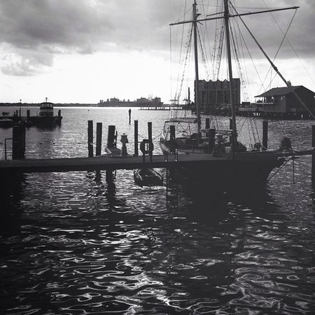 Vscocam and Snapseed mix. Iphoneonly NorfolkVA ?⚓