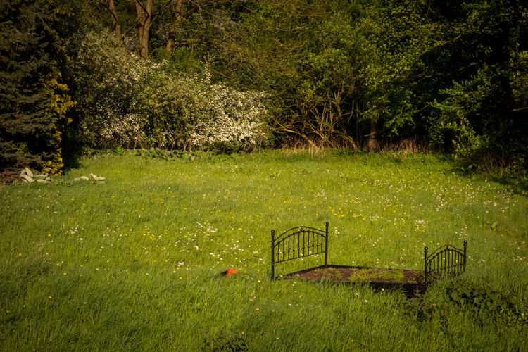View of park bench on field