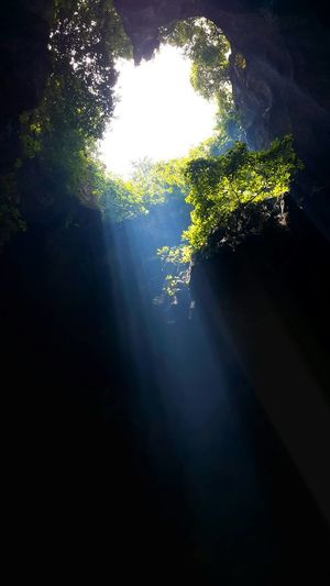 No People Mountain Sky Beauty In Nature Light Trail Nature Cave Photography Sunlight Leaf Plant Cave