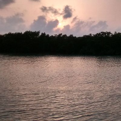 Beauty at its best... Sunset Sunderbans