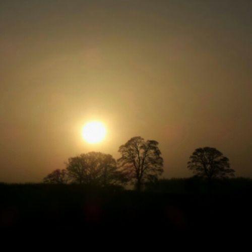 Hide and Seek Sun Sunrise Sky Trees Tree Orange Early Uk Skyporn Burnt Unitedkingdom Banbury Ruleofthirds