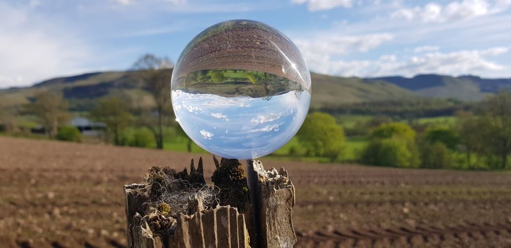 Hobby Cloud Summer Outdoors Inverted EyeEm Selects Tree Reflection Planet Earth Rural Scene Sky Close-up Grass Crystal Ball Cultivated Land Crop  Agricultural Field Farmland #FREIHEITBERLIN