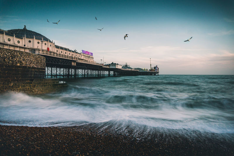 Brighton Pier Brighton Brighton Beach Brighton Pier Animals In The Wild Architecture Beach Bird Day Flying Long Exposure Outdoors Palace Pier Sea Sky Water Wave