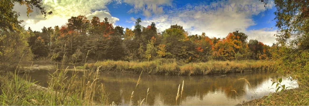 Fall Colours HDR Credit River