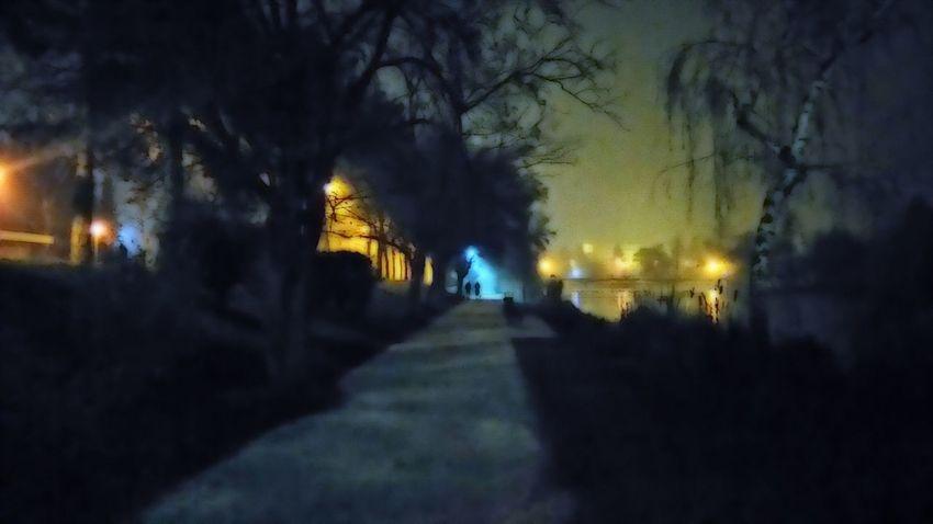 Made by Sony Xperia M4 Aqua Cityscape Cold Comic Style Fog Foggy Lights Night Night Lights Shadow Street Streets Szombathely Szombathely At Night Tree Trees