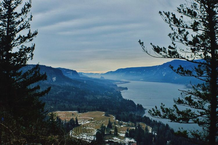 Cape Horn view point. Sky Mountain Tree Cloud - Sky Beauty In Nature Mountain Range No People Nature Scenics Outdoors Water Day Cape Horn Columbia River Gorge My Point Of View Oregon Oregonlife Oregonexplored Cold Temperature Enjoying Life Taking Photos Nikon D3300