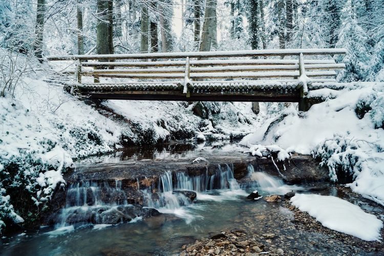 Low angle view of footbridge over stream in snow covered forest