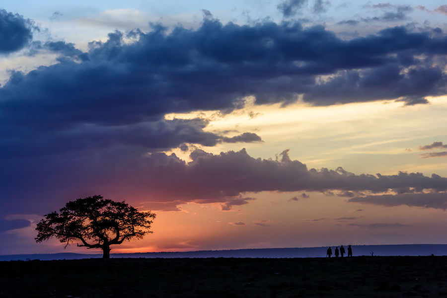 Acacia Acacia Tree Kenya Africa Beauty In Nature Cloud - Sky Dramatic Sky Idyllic Nature Orange Color Outdoors People Walking  Scenics Silhouette Sky Sunset Tranquil Scene Tranquility Travel Destinations Tree Vacations
